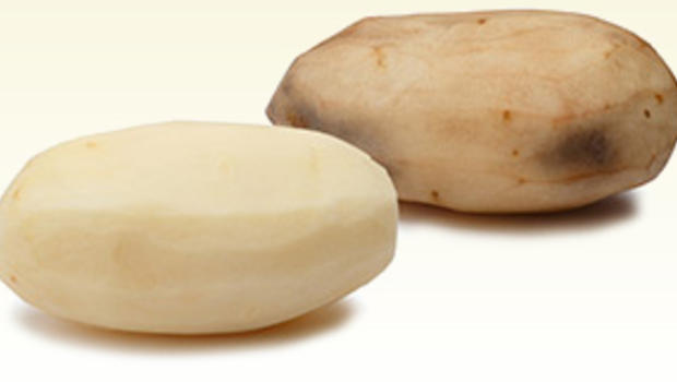 gmo-potato