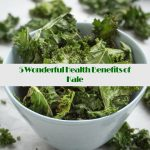 5 Wonderful Health Benefits of Kale