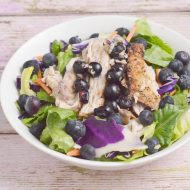 Salmon and Blueberry Salad, Dairy and Gluten Free