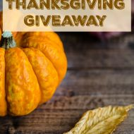 $1200 Thanksgiving Giveaway! Ends 11/25