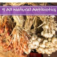 9 All Natural Antibiotics