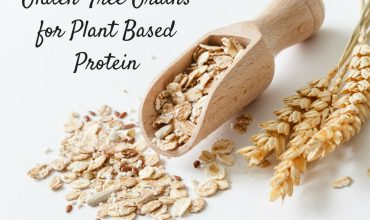 Gluten Free Grains for Plant Based Protein